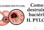 h_pylori